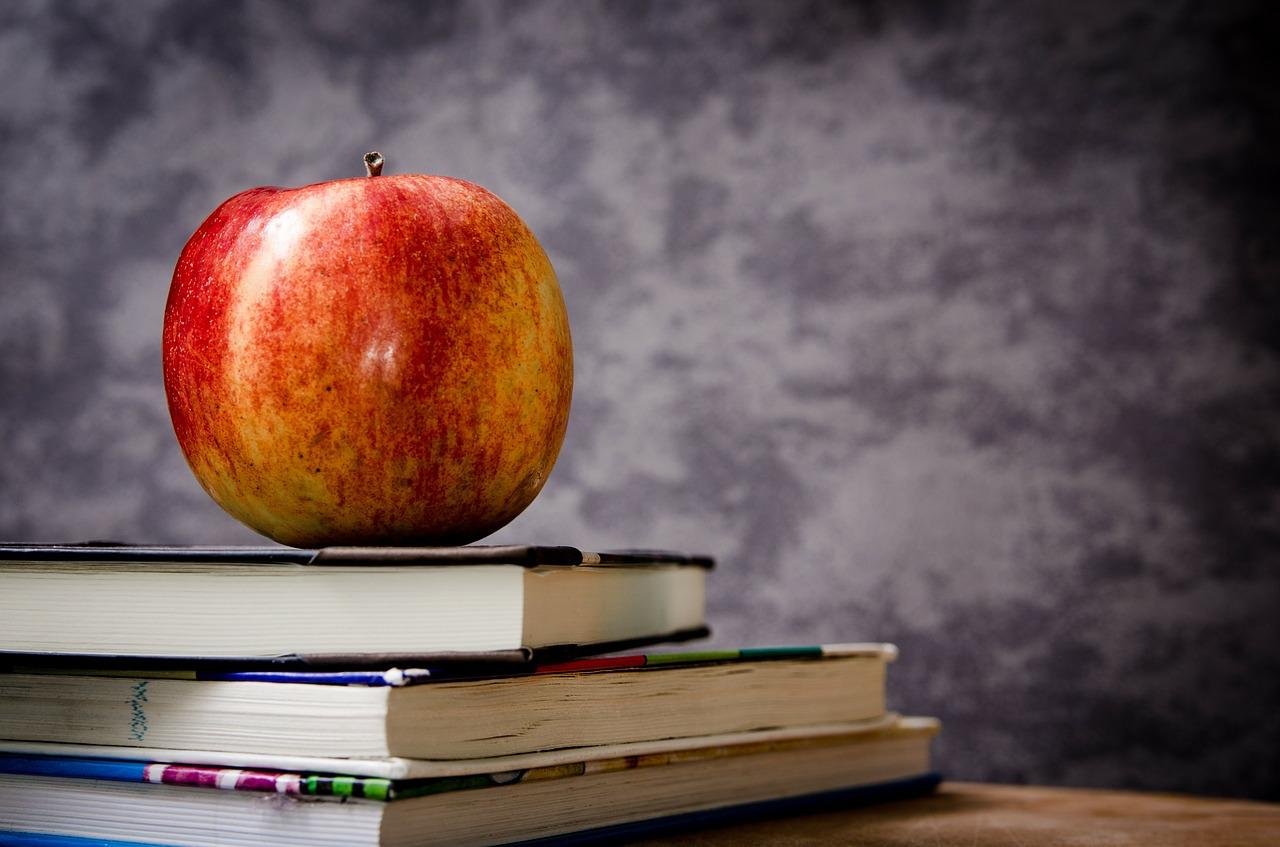 Nauka języka za darmo – darmowy kurs angielskiego. Darmowe kursy językowe -język angielski nauka online.